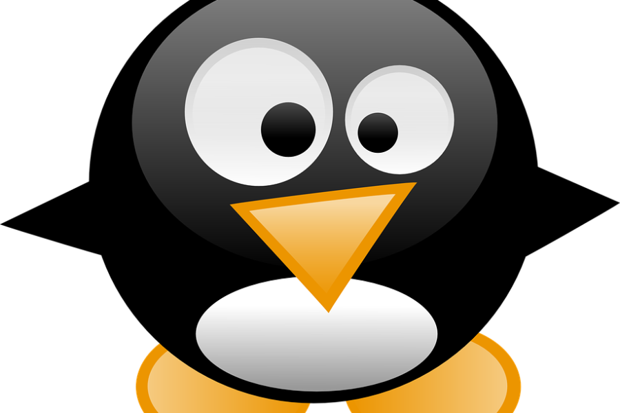 Algoritmo Google: Penguin 2.0