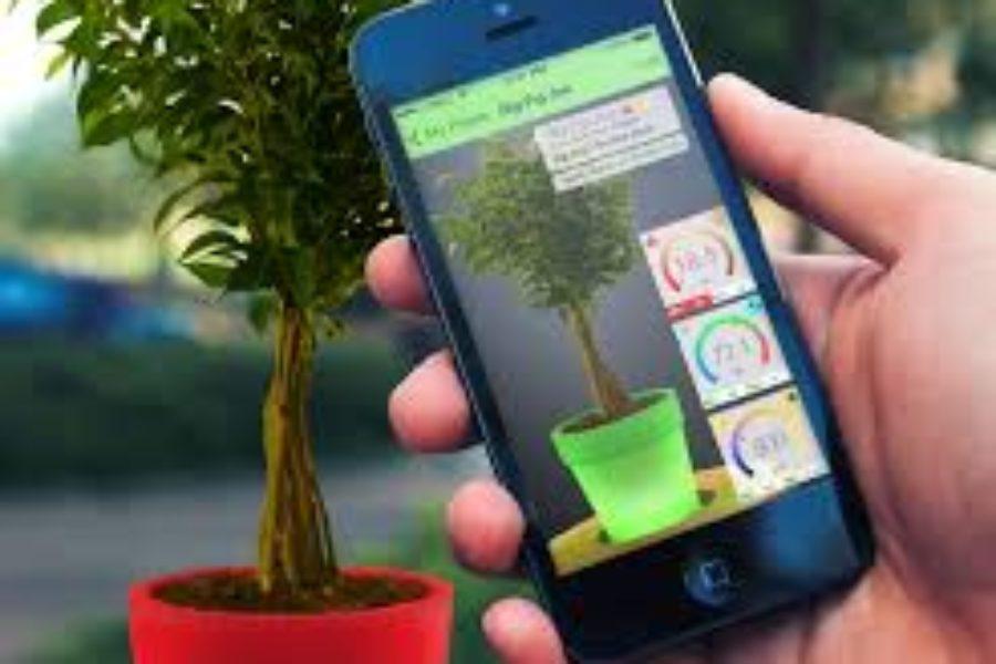 Cresce il mobile commerce